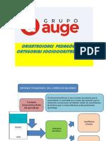 orientaciones pedagógicas y categorias pedagógicas  PDF