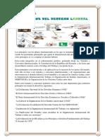 carpeta-de-legislacion.docx