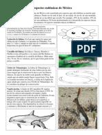 ESPECIES ENDEMICAS DE MEXICO pdf