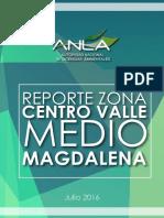 Reporte ANLA VMM.pdf
