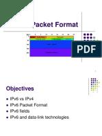merz-ipv6-02-packet-format