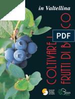 libro_frutti