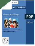 INFORME-PRACTICAS-FINAL.docx