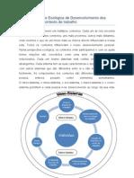 Sistema de Base Ecológica de Desenvolvimento dos Indivíduos em contexto de trabalho