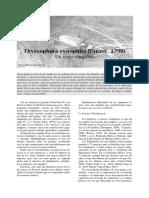 Thyreophora cynophila un caso singular