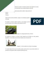 Maderas para el acuario.pdf