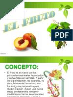 EL FRUTO.pdf