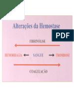 Hemostase.pdf