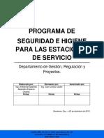 DISEÑO DE PROGRAMA DE SEGURIDAD E HIGIENE EN ESTACIONES DE SERVICIO.pdf