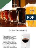 fermentatia alcoolica