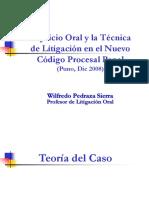 Teoría del caso WPS
