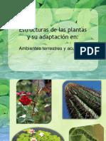 Adaptacion-de-las-plantas-al-ambiente.pdf