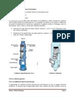 tirage cours absorption 3 M1 GC.pdf