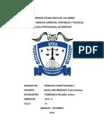12 CONSTITUCIONES.docx