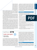 294693276-Lesion-Renal-Aguda.pdf