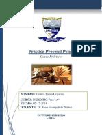 CASOS PENAL.docx