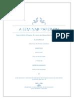 a seminar paper o1.pdf