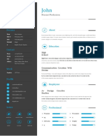 01_Professional Clean Resume