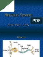 NCM 104 Neuro