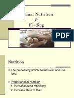 animal nutrition .ppt