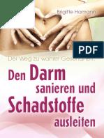 Darm und Detox.pdf