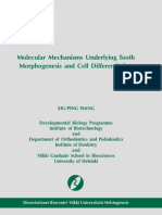 Molecular Mechanisms underlying Tooth Morphogenesis