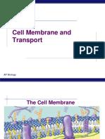 Ch 06 Cell Membrane Diffusion
