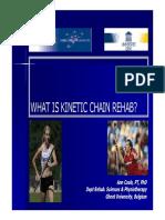 10.A.Cools Kinetic chain.pdf