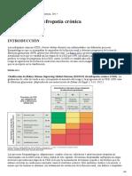06 - Nefropatía Crónica (Harrison).pdf