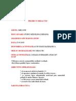 Proiect-numeralul ordinal