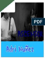 291195222-Adri-Nunez-Ascensor.pdf