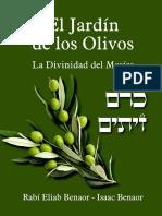 El jardin de los Olivos