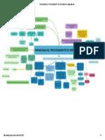 PARADIGMA DEL PROCESAMIENTO DE INFORMACION _ Mapa Mental.pdf