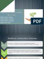 Auditorias-Ambientales-Externas (1)