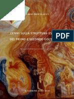 CenniSullaStrutturaEsotericaDelPrimoESecondoGoetheanum,Ediz.Web.