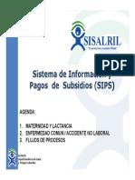 presentacion_ejecutiva_subsidios
