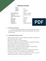 Copia de Copia de Copia de Copia de Copia de Copia de INFORME DE ANAMNESIS GHAIRDELY