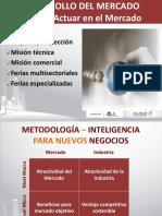 Desarrollo de Mercado.pdf