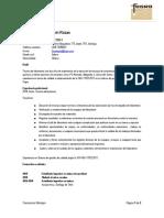 CV FRANCESSCA MONTUPIN.docx