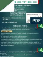 PERIODO FETAL