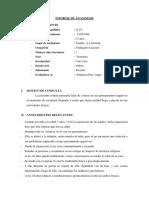 Copia de Copia de Copia de INFORME DE ANAMNESIS GHAIRDELY