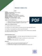 97372039-Proiect-de-Activitate-Iarna