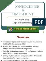 19 Gluconeogenesis & HMP shunt