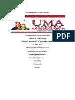 346062745-PAE-DE-ITU.docx
