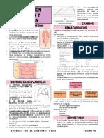 5 embarazo y crecimiento fetal.pdf