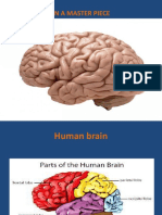 Baby's brain begins now