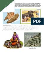 Pueblos Originarios.docx