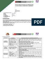 modelo de programación anual