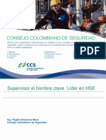 SUPERVISOR EL HOMBRE CLAVE - LIDER EN HSE