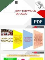 DERIVACION DE CASOS